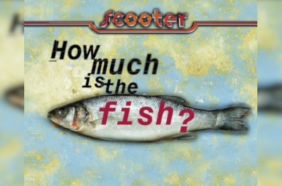 Сингл «How Much Is The Fish?»